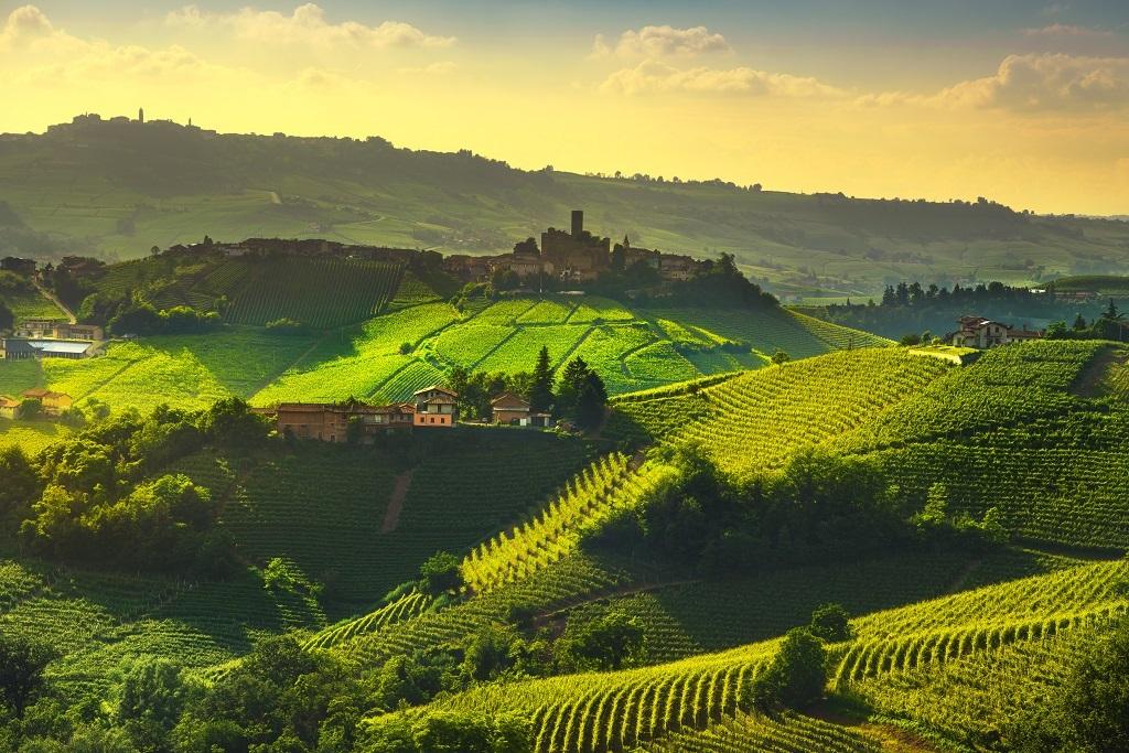 Exclusive Piedmont, Italy's Wine Region