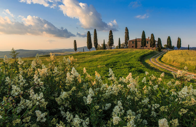 Rome And Tuscany Private Luxury Tour 4