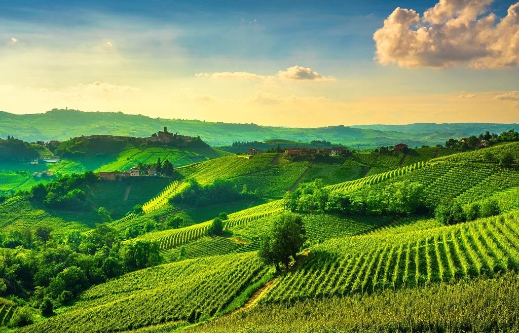 Piedmont & Tuscany Wine Tour